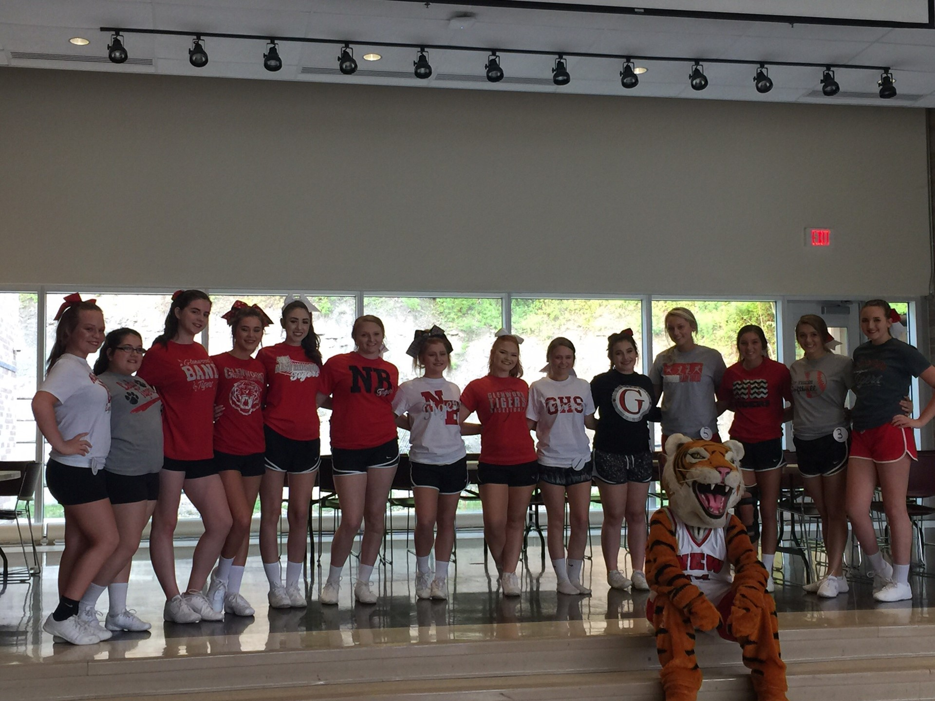 2017-2018 High School Cheerleaders